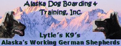Alaska Dog Boarding & Training Inc.