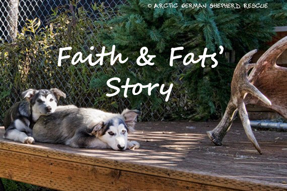 AGSR Long Road To Recovery Faith and Fats Story